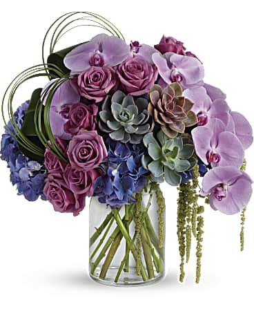 flowers/by-type/orchids-flower